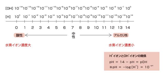 ph_yakuhin-syouhi_01