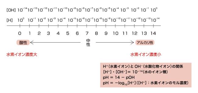 ph_yakuhin-syouhi_01b